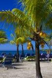 De Caraïbische Toevlucht van het Strand Royalty-vrije Stock Foto