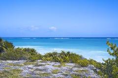 De Caraïbische Zee en het witte golfstrand onder blauwe hemel, Tulum, het Schiereiland van Yucatan, Mexico, groene grasvoorgrond, Stock Foto