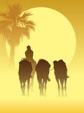 De caravan van de kameel stock illustratie