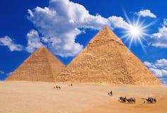 De caravan van de kameel Royalty-vrije Stock Afbeeldingen