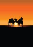 De caravan van de kameel in de Sahara bij zonsondergang royalty-vrije illustratie