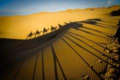De caravan van de kameel in de woestijn van de Sahara Royalty-vrije Stock Afbeeldingen