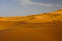 De caravan van de kameel met toeristen die zandduinen berijden Royalty-vrije Stock Afbeeldingen