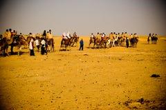 De caravan van de woestijn stock afbeelding