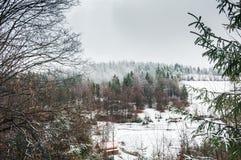 De Carpathian bergen Arkivbild
