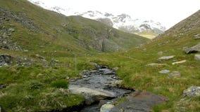 De cascade op kleine bergstroom in Alpen, water loopt over stenen in groene weide stock video