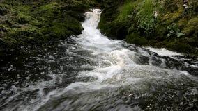 De cascade op kleine bergstroom, water loopt stock videobeelden