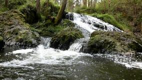 De cascade op kleine bergstroom, water loopt stock footage