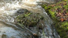 De cascade op kleine bergstroom, water stelt trog grote barst in basaltkei in werking en de bellen leiden tot op niveau melkachti stock footage