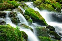 De cascade van de bergkreek Royalty-vrije Stock Fotografie