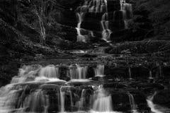 De cascade van de waterval met mos royalty-vrije stock foto's