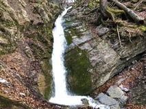 De cascades en de watervallen op de kreek onder Alp Sigel bereiken in Alpstein-bergketen en Appenzellerland-gebied een hoogtepunt royalty-vrije stock afbeeldingen