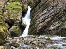 De cascades en de watervallen op de kreek onder Alp Sigel bereiken in Alpstein-bergketen en Appenzellerland-gebied een hoogtepunt royalty-vrije stock afbeelding