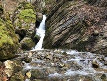 De cascades en de watervallen op de kreek onder Alp Sigel bereiken in Alpstein-bergketen en Appenzellerland-gebied een hoogtepunt royalty-vrije stock fotografie