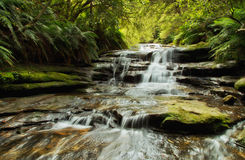 De Cascades van Leura Stock Foto