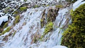 De cascadestroom van de close-up langzame die motie door groen en van angst verstijfd mos wordt omringd Hoge minerale inhoud in b stock video