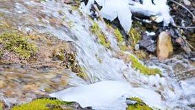 De cascadestroom van de close-up langzame die motie door groen en van angst verstijfd mos wordt omringd Hoge minerale inhoud in b stock footage