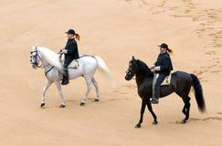 De cavaleriestieren van sheriffs royalty-vrije stock afbeelding