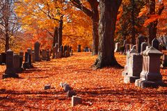 ` De Cedar Grove de `, cimetière historique et parc Photographie stock libre de droits