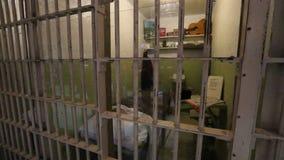 De cel van Alcatrazallen west stock footage