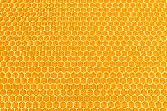 De cellen van de honing Stock Foto