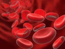 De cellen van het bloed Stock Afbeeldingen