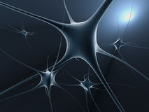 De cellen van het neuron Stock Afbeeldingen
