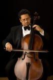 De cellist Stock Foto's