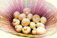 De champignon schiet, in een mand lichte achtergrond, gezonde voeding, vignet als paddestoelen uit de grond stock afbeeldingen
