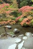 De charme van de herfst in Japanse tuin Stock Afbeeldingen
