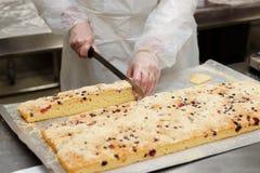 De chef-kok is scherp koekje royalty-vrije stock fotografie