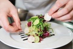 De chef-kok verfraait voorgerecht stock foto's