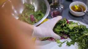 De chef-kok zet een salade op een plaat stock videobeelden