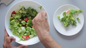 De chef-kokhanden zetten de salade in een kom stock footage