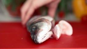 De chef-kokhanden zijn scherpe verse vissen op filets met mes stock videobeelden