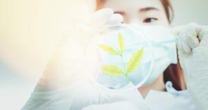 De chemie van het wetenschapperonderzoek bij wetenschapslaboratorium Royalty-vrije Stock Foto