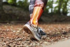 De cheville de douleur concept de blessures de sports en détail - photo stock
