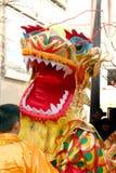 De Chinese Dag van het Nieuwjaar Royalty-vrije Stock Foto's