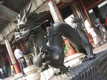 De Chinese Draak van het Paleis van de zomer Royalty-vrije Stock Afbeeldingen