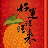 De Chinese Goede Symbolen van het Geluk Stock Fotografie