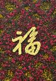 De Chinese karakters van de bloemsamenstelling Royalty-vrije Stock Afbeeldingen