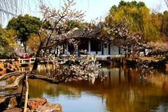 De Chinese klassieke tuinen van Suzhou royalty-vrije stock afbeelding
