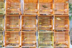De Chinese Kooi van de Vogel Stock Foto