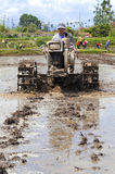 De Chinese landbouwerswerken in een padieveld Stock Foto's