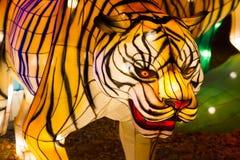 De Chinese lantaarn van de het Nieuwjaartijger van het Lantaarnfestival stock afbeeldingen