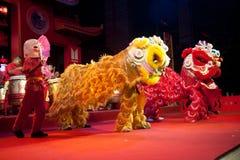 De Chinese leeuw toont. Stock Foto