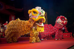 De Chinese leeuw toont. Stock Afbeelding
