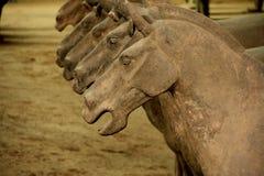 De Chinese paarden van terracottastrijders stock afbeeldingen