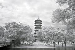 De Chinese Pagode van de Tuin Royalty-vrije Stock Afbeeldingen