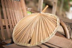 De Chinese Palm van de Ventilator Royalty-vrije Stock Foto